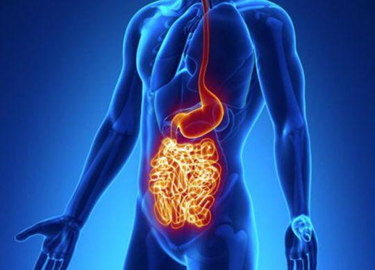 maladie de crohn, mici, rch, rectocolite, intestin, inflammation, colite ulcéreuse, maladie de chrone, crohn, maladie crohn, crohn symptome, inflammation intestin, maladie de crohn traitement